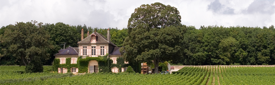 Burgundy 2015 En Primeur Offer