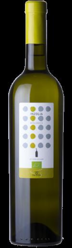 paolini inzolia - wimbledon wine cellar