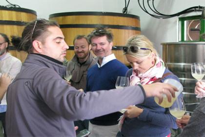 Greek Wine's New Wave Spyros Zoumboulis of T-Oinos Estate