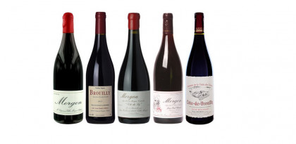 Beaujolais Crus & Beaujolais Nouveau 2017 tasting - 16th November 2017 - Wimbledon Wine Cellar